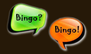 Bingo Is All About The Chat