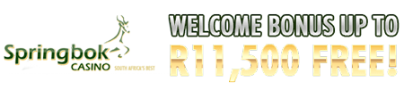 R11'500 Welcome Bonus At Springbok Casino